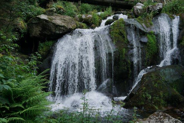 Waterval dicht bij huis