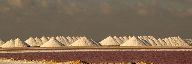 Cargill zoutpannen