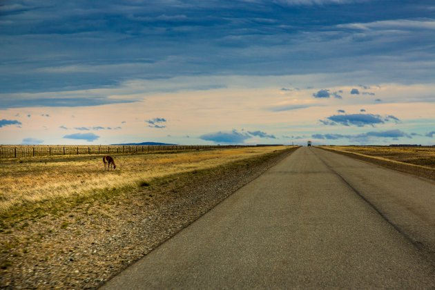 De prachtige leegte van Argentijns Patagonië