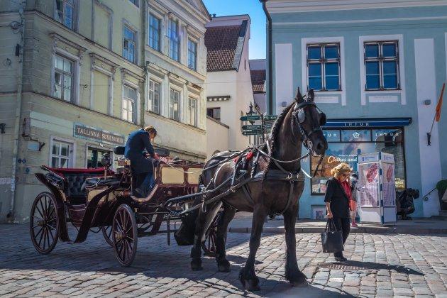 De hoofdstad van Estland