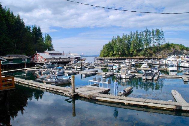 Pareltje op Vancouver Island