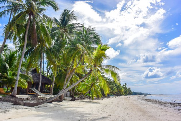 Picture perfect strand op Siquijor