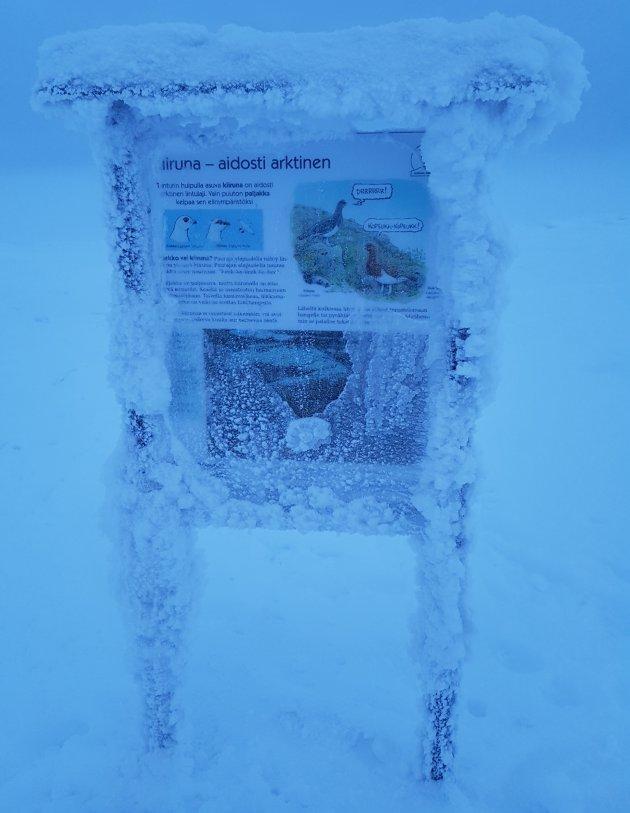 ijskoud prachtig lapland