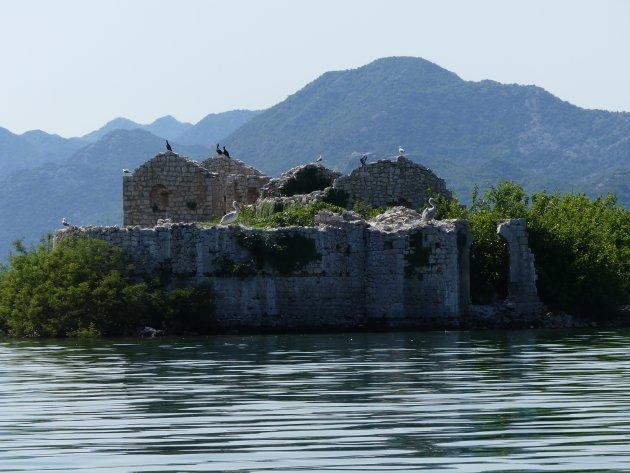 Het Alcatraz van Montenegro wordt overgenomen door vogels