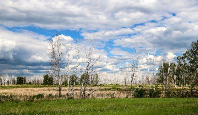 West Siberië