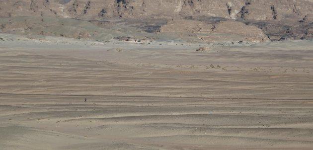 Nietig in de grote woestijn