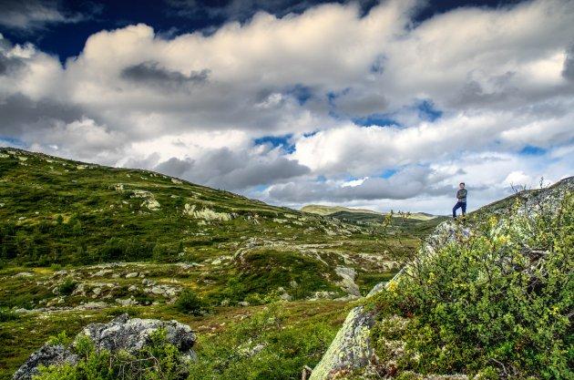 Hiken met kids in Hardangervidda NP