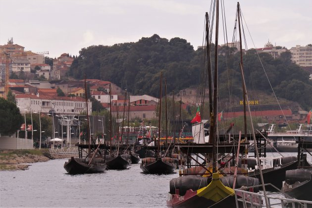 Portboten