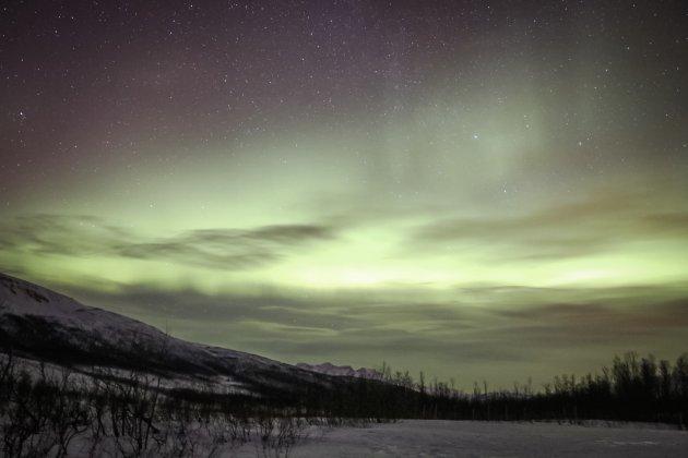 Magisch groen - het Noorderlicht