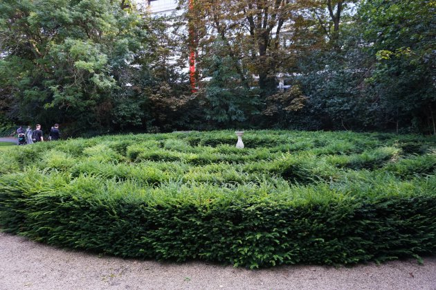 labyrint The Iveagh Gardens