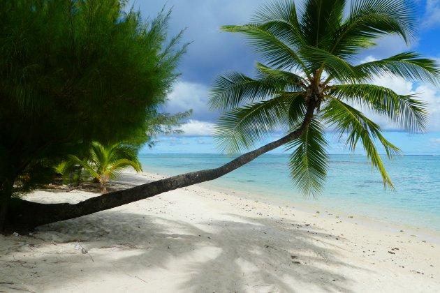 Dreaming of a white... beach