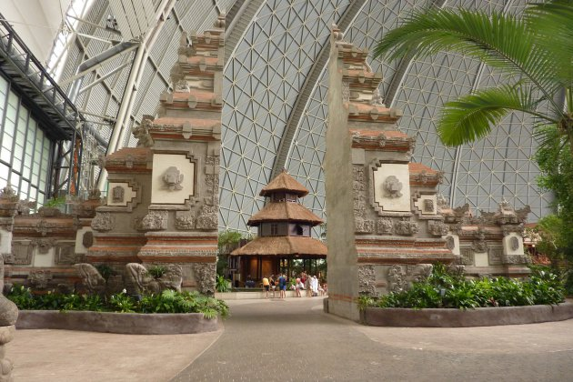 Een tropisch indoorparadijs