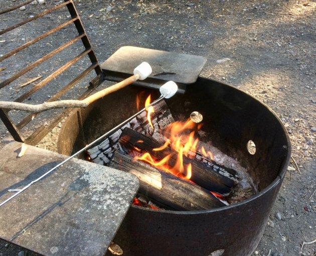 Marshmallows roosteren op het kampvuur