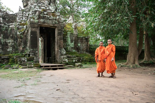 Jonge monnikken in Angkor Wat