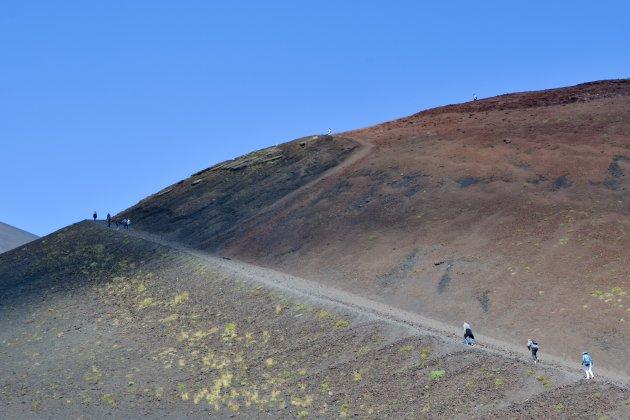 Silvestri Kraters