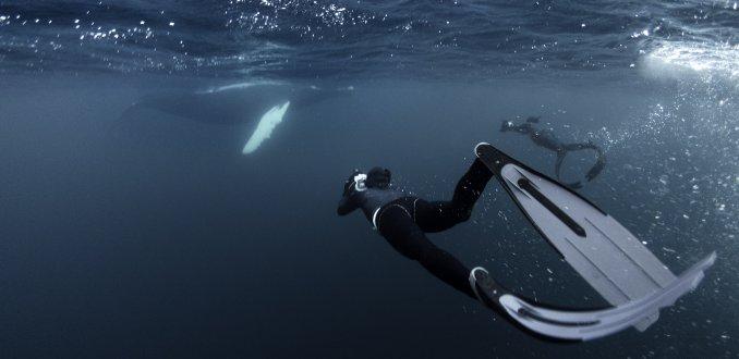Sprong in het donkere diepe