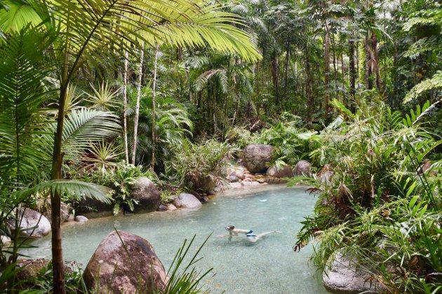 Verblijf in Daintree Rainforest
