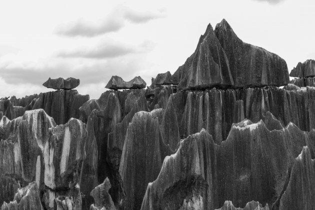 Het stenen woud met losliggende rotspunten