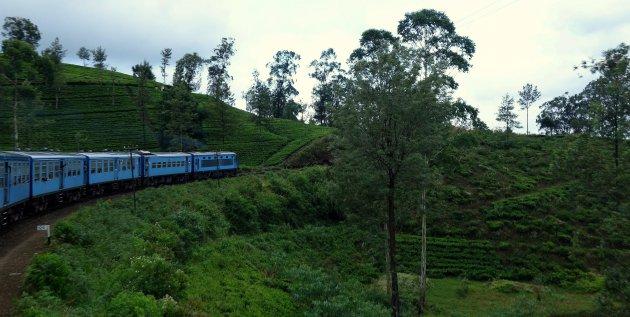Treinen door het groene centrale hoogland van Sri Lanka