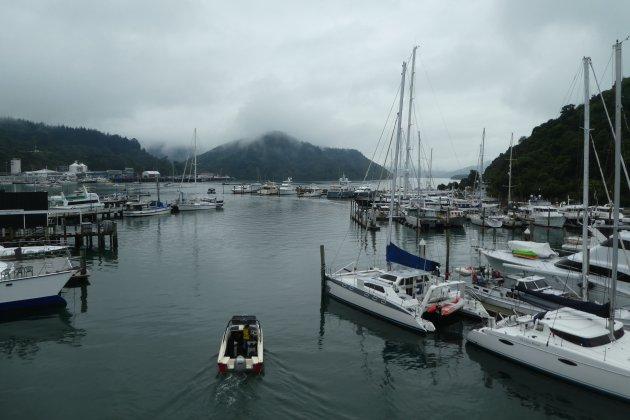 De ferry van Picton naar Wellington