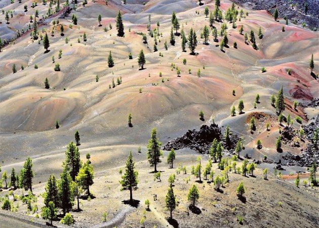 De Cinder Cone en Painted Dunes
