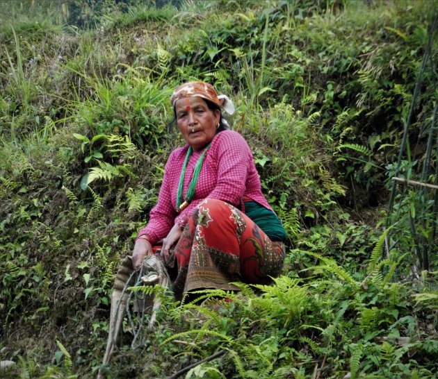 Adhikari-vrouw