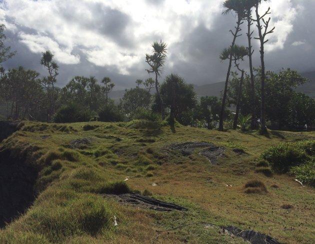 Het ruige zuiden van een veelzijdig eiland