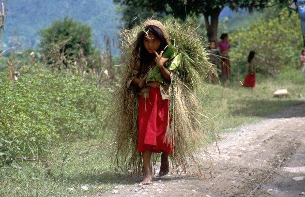 Nepal onderweg