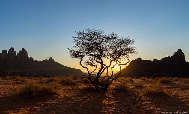 Zonsondergang in de woestijn van Saoedi-Arabie