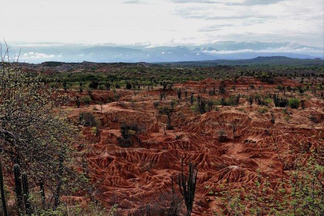 de rode Tatacoa woestijn