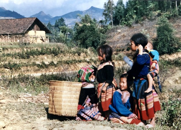 Young flower Hmong naar de markt