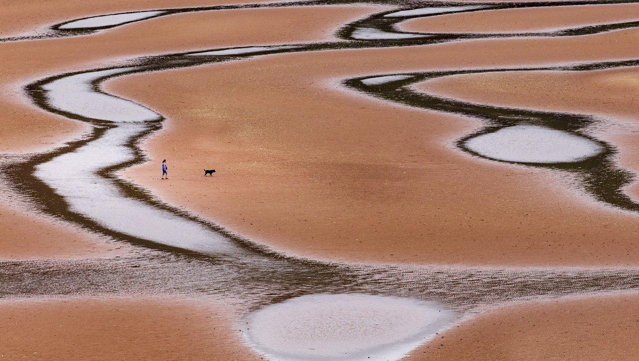 Hond uit laten op een bijzonder strand