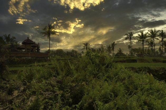 Een wandeling op het eiland Bali