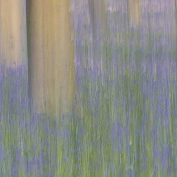 '1113609' door antwan