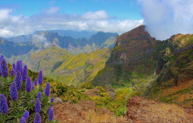 Picos do Madeira