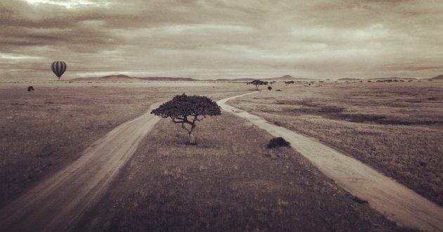 Serengeti overview