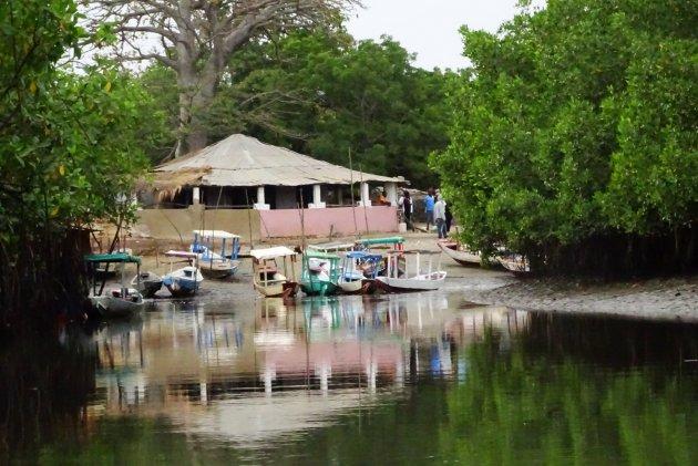 Lamin Creek