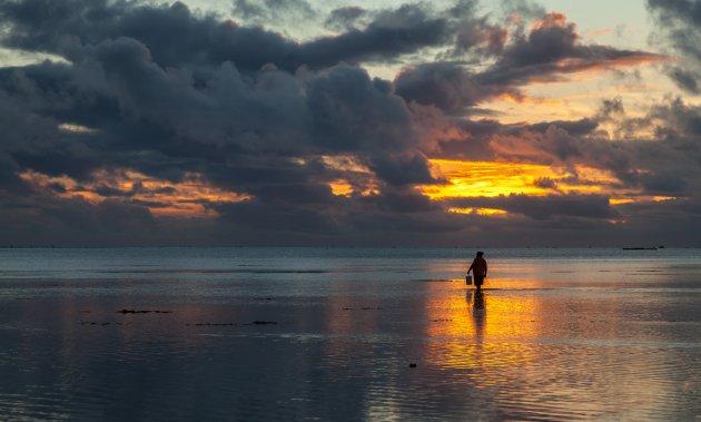 Inktvisjes zoeken op Aitutaki