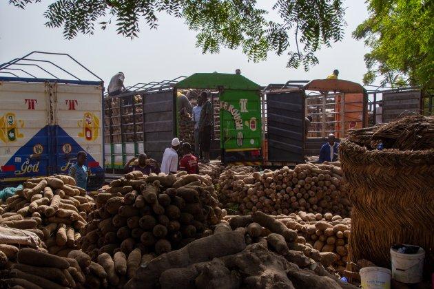 yam distributiepunt in noord-Ghana