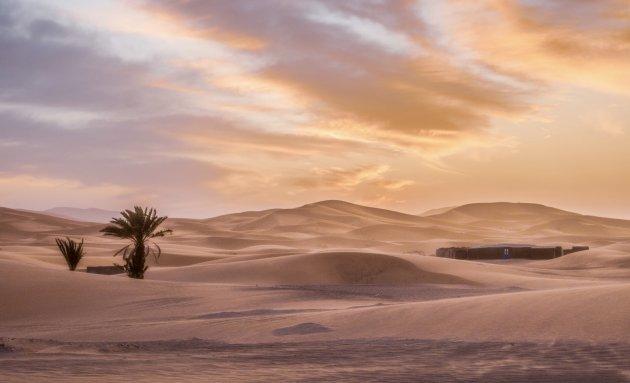 De woestijn heeft vele gezichten