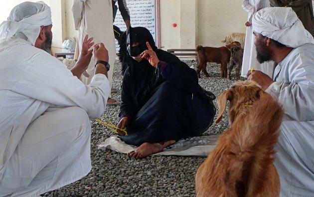 Sinaw, weg van de massa tussen de geiten en kamelen