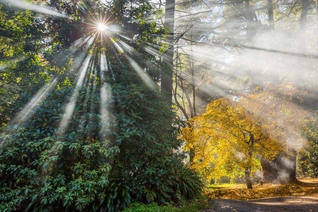 Rokerig zonnetje in de herfst