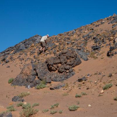 Voorvertoning Zelf fossielen zoeken.