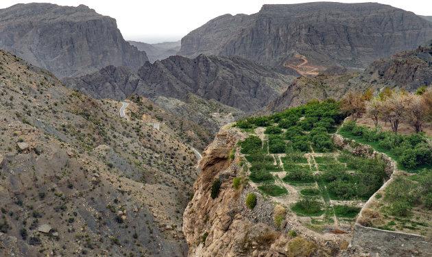 Naar de rozentuinen in het Hajargebergte