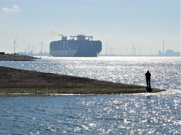 Grootste containerschip op de Westerschelde.