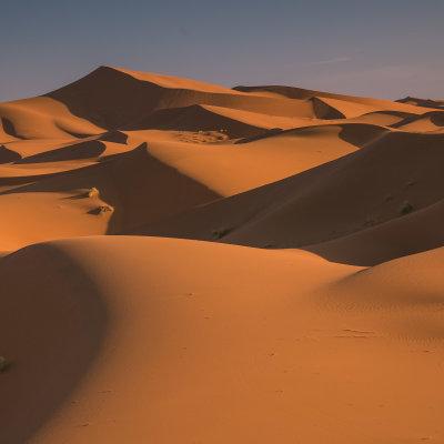 Voorvertoning Verloren in zand
