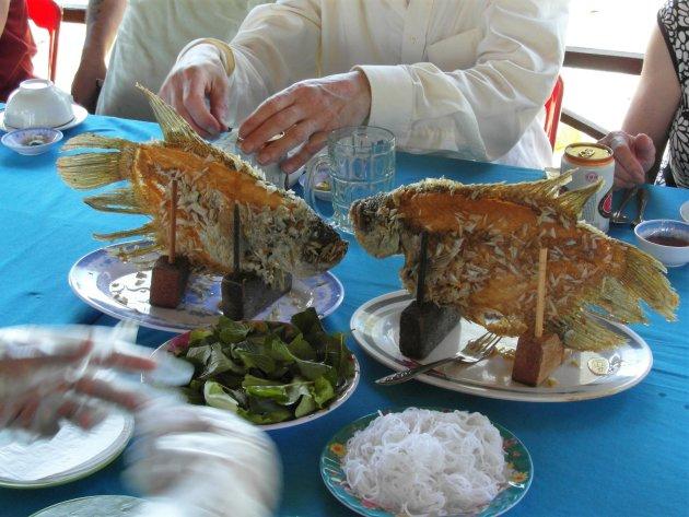 Vietnamese vis