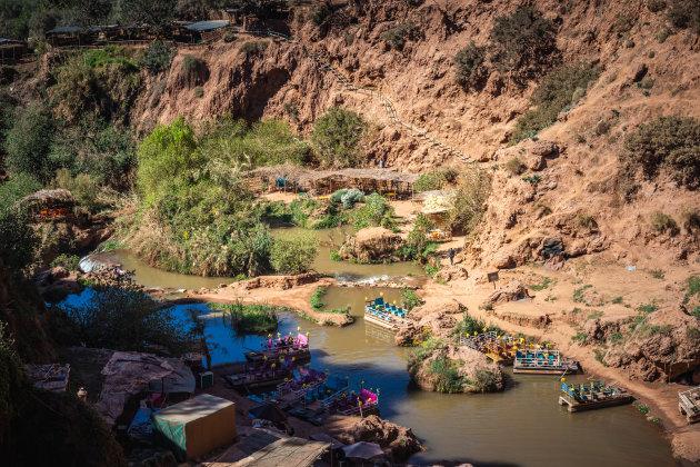 Het woongebied van de berberapen