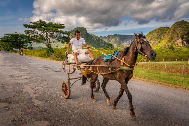 Met paard en kar in Viñales