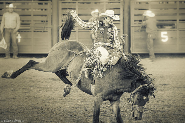 Beleef een Amerikaanse rodeo